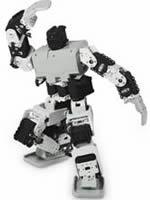 雙足多自由度(14~22 DOF)機器人的運動規劃與行為控制