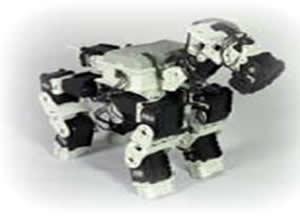 四足多自由度(10~14DOF)機器人的運動規劃與行為控制